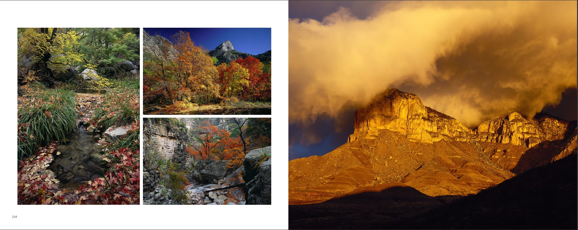 Treasured Lands Guadalupe Mountains NP